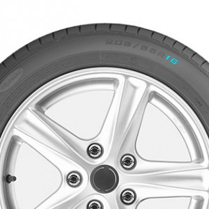 Wheel Diameter Assurance TripleMax 205-55-R16 Asia