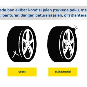 WFP - GYI web tire damage